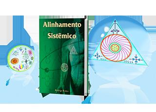 Alineamiento Sistémico - La malla magnética del cuerpo